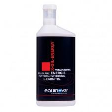 EQUINOVA X-OIL_ENERGY