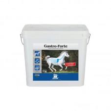 Derby® Gastro Forte (5 kg)