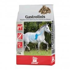 DERBY® GASTROLINIS - smaczki (4Kg)